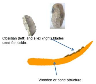 Neolithic sickle with fitted microliths